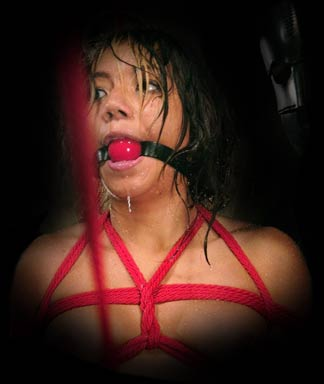 Slavegirl from Water Bondage
